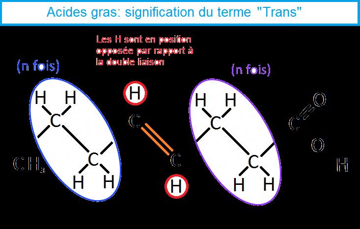 AG mono insaturés forme Trans