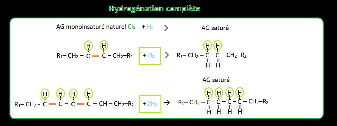 Schéma hydrogénation complète des acides gras Cis