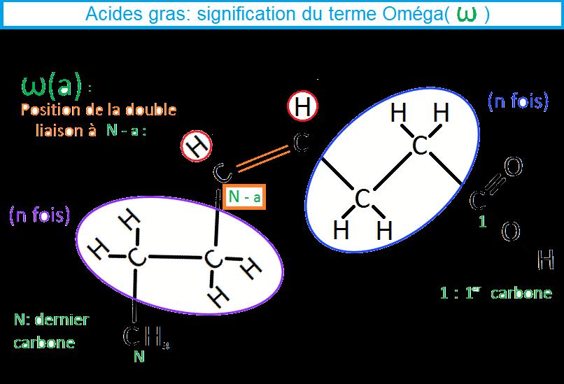 AG insaturés explication terme Omega