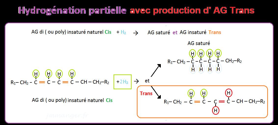 Schéma hydrogénation partielle et production d'acides gras insaturés trans