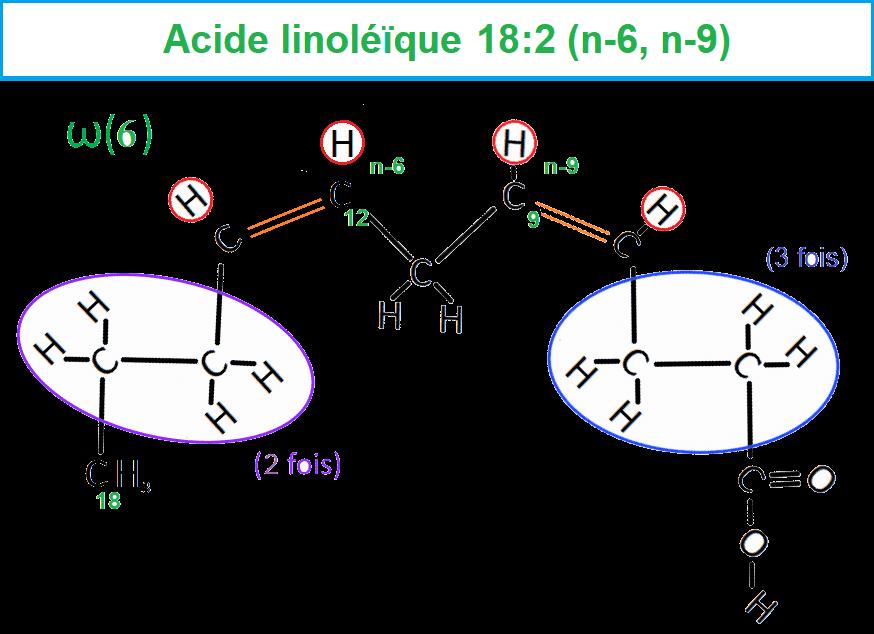 AG linoléïque Omega6 Cis