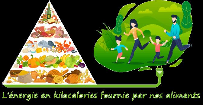 Repas, calcul en kilocalorie